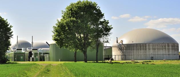 """""""Von großer Bedeutung für den Ausgleich von Wind- und Solarkraftwerken sind Biomasseanlagen, da sie zeitlich flexibel Strom erzeugen können"""", sagt Hermann Falk."""