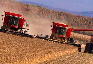 Krasnodar ist die Kornkammer Russlands. Um das geerntete Getreide auch vor Ort weiterverarbeiten zu können, braucht es Landtechnik-Importe. Einige Ausschreibungen laufen schon.