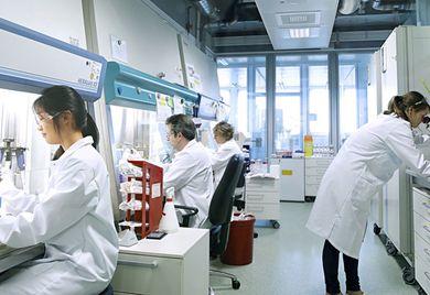 Lust am Experimentieren: Beim Softwareunternehmen Veda arbeiten Werkstudenten im Innovation-Lab an Prototypen.