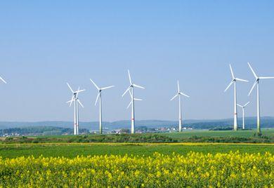 Windräder statt Atomkraftwerke: Wird Strom für Unternehmen durch die Energiewende teurer?