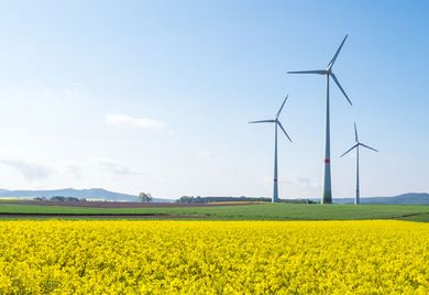 Grünes Gewissen: In 2017 schon könnten Unternehmen gesetzlich zum Klimareporting verpflichtet sein.