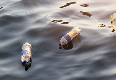 Das sollte nicht passieren: Kunststoff, der im Meer landet, ist definitiv nicht nachhaltig.