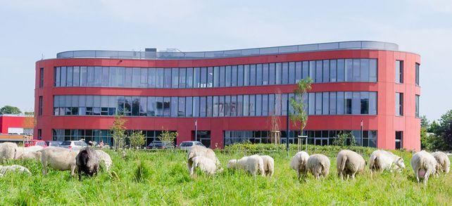"""Ab aufs Land: In der Firmenzentrale, dem """"Dvelop-Campus"""" in Gescher, arbeiten 422 Mitarbeiter."""